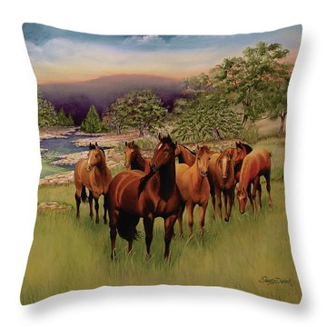 Salado 3 Throw Pillow