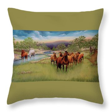 Salado Throw Pillow