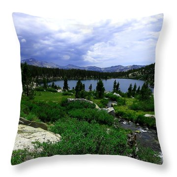 Sallie Keyes Storm Throw Pillow by Paul Foutz