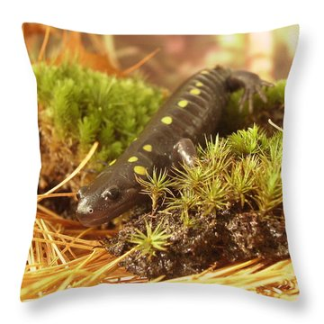 Sally The Spotted Salamander Throw Pillow