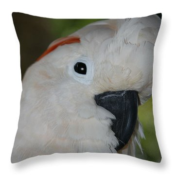 Salmon Crested Cockatoo Throw Pillow by Sharon Mau
