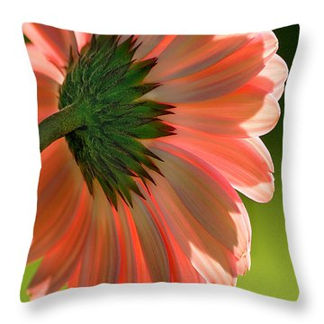 Salmon Pink Daisy Throw Pillow