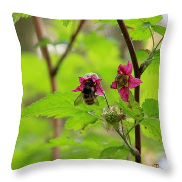 Salmonberry Honey Throw Pillow