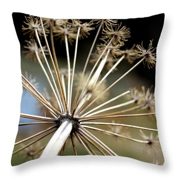 Salsify Stems Throw Pillow