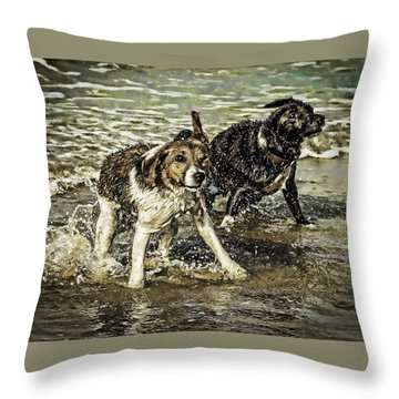 Salt And Shake Throw Pillow