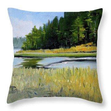Throw Pillow featuring the painting Salt Creek by Nancy Merkle