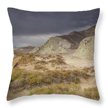 Salt Creek Trail Throw Pillow