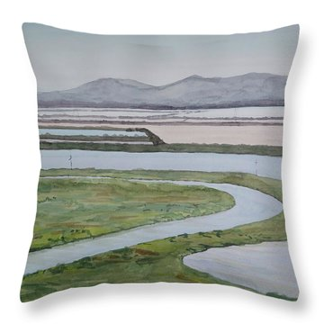 Salt Fields Throw Pillow by Bethany Lee