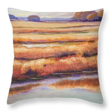Salt Marsh In Autumn  Throw Pillow by Sally Simon