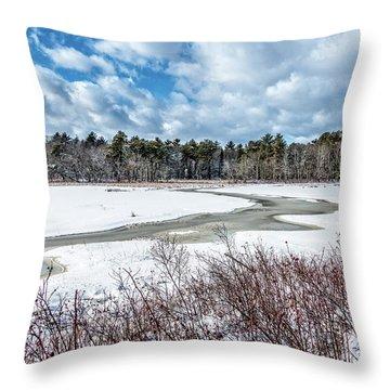 Salt Marsh Meander Throw Pillow