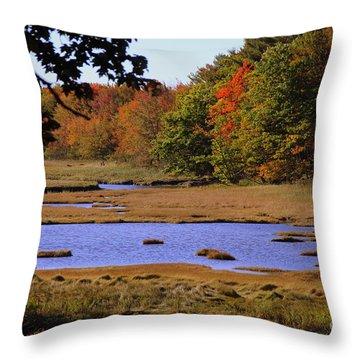 Salt Marsh River Throw Pillow