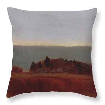 Salt Meadow In October, 1872 Throw Pillow