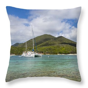 Throw Pillow featuring the photograph Salt Pond Bay Panoramic by Adam Romanowicz
