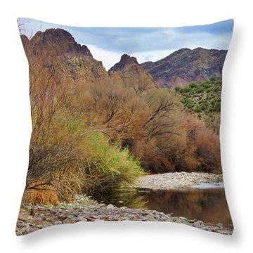 Salt River Pebble Beach Throw Pillow
