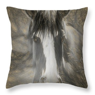 Salt River Stallion Throw Pillow