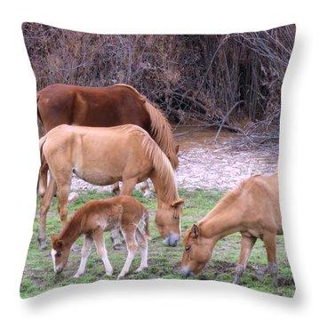 Salt River Wild Horses In Winter Throw Pillow