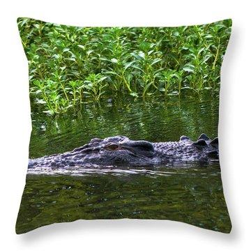 Saltwater Crocodile In Kakadu Throw Pillow