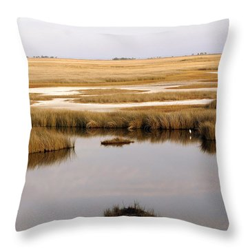 Saltwater Marsh Throw Pillow by Marty Koch