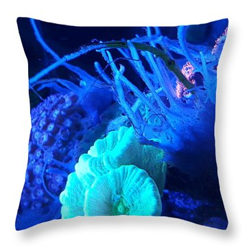 Saltwater Sponge Throw Pillow