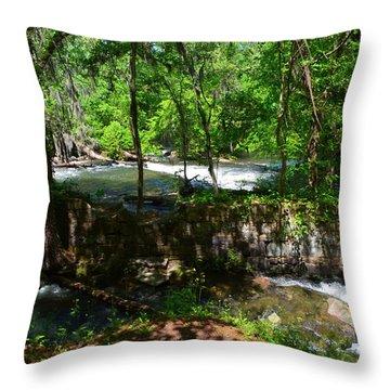 Saluda River Columbia Sc Throw Pillow