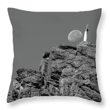 Salutation Throw Pillow