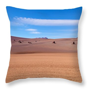 Salvador Dali Desert With Clouds Throw Pillow by Aivar Mikko