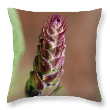 Salvia Throw Pillow