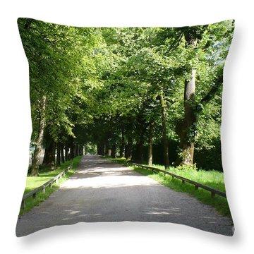 Salzburg Lane Throw Pillow by Carol Groenen