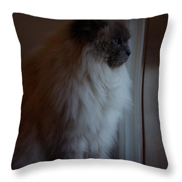 Sam Waits Throw Pillow