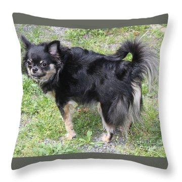 Sammie Jo 2 Throw Pillow