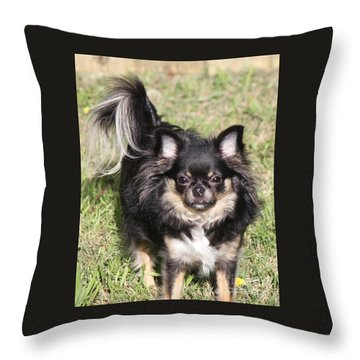 Sammie Jo Throw Pillow