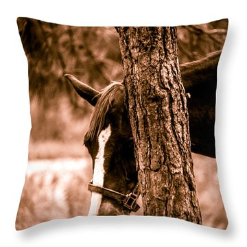 Samson In Sepia Throw Pillow