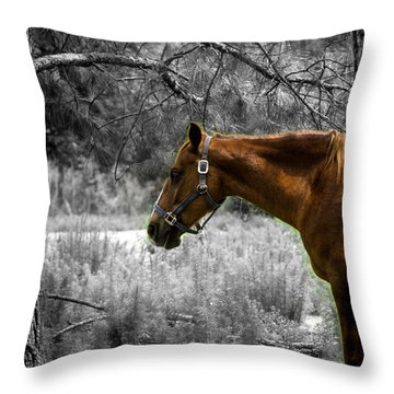 Samson Throw Pillow