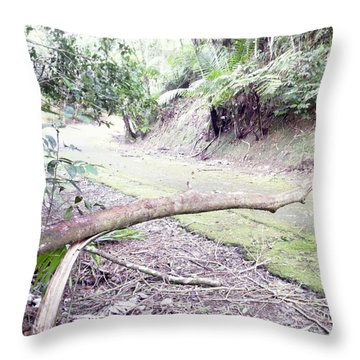 San Andres Echologycal Path At Guilarte's Forest Throw Pillow