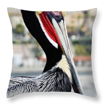 Throw Pillow featuring the photograph San Diego Pelican by Kyle Hanson