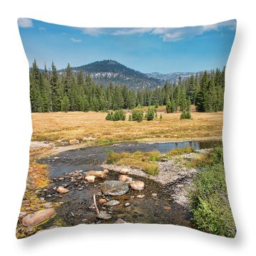 San Joaquin River Scene Throw Pillow