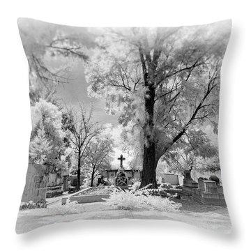 Throw Pillow featuring the photograph San Jose De Dios Cemetery by Sean Foster