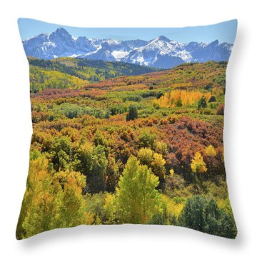 Throw Pillow featuring the photograph San Juan Mountains From Dallas Divide by Ray Mathis