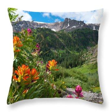 Throw Pillow featuring the photograph San Juans Indian Paintbrush Landscape by Cascade Colors