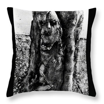Sanctuary Throw Pillow