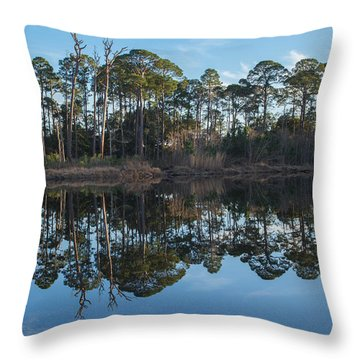 Throw Pillow featuring the photograph Sanctuary Reflection  by Julie Andel