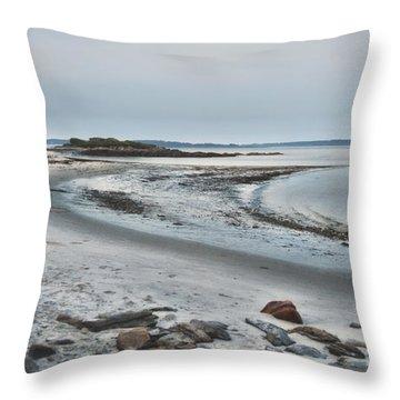 Sand Along The Shoreline Throw Pillow