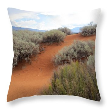 Sand And Sagebrush Throw Pillow