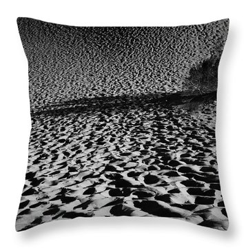 Sand Dune Throw Pillow by Catherine Lau