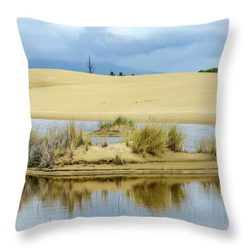 Sand Dunes And Water Throw Pillow