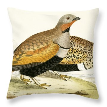 Sand Grouse Throw Pillow by English School
