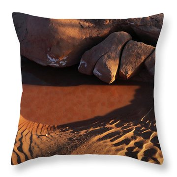 Sand Puddle Throw Pillow