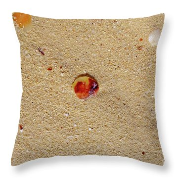 Throw Pillow featuring the photograph Sand Shell Art by Francesca Mackenney