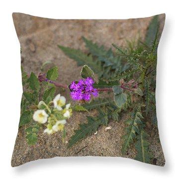 Sand Verbena Sunset Throw Pillow