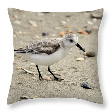 Sanderling Throw Pillow by Al Powell Photography USA